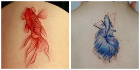 Tatuajes de peces koi y su significado dise o for Significado de pez koi