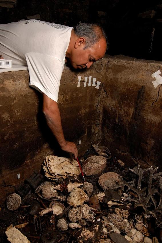 descubren restos de animales en las ofrendas del templo mayor 2