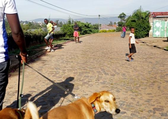 fotografias de yana paskova sobre extincion de perros en ruanda 1