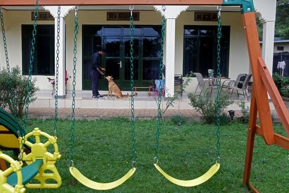 fotografias de yana paskova sobre extincion de perros en ruanda 6