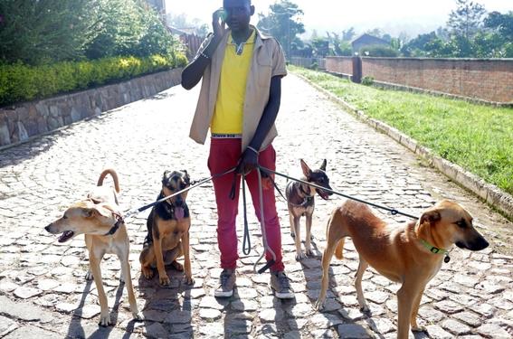 fotografias de yana paskova sobre extincion de perros en ruanda 13