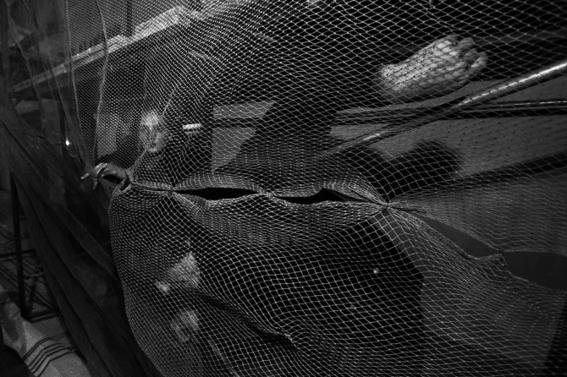 fotografias de arnold veber de un rave en rusia 6