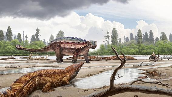 nueva especie de dinosaurio descubierta 1