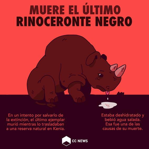 muere ultimo rinoceronte negro 1