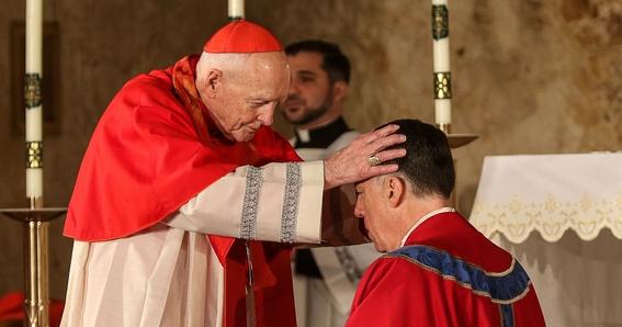 papa francisco acepta renuncia de cardenal mccarrick 1