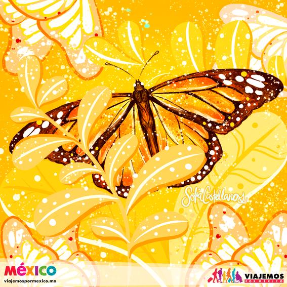 artistas mexicanas 21