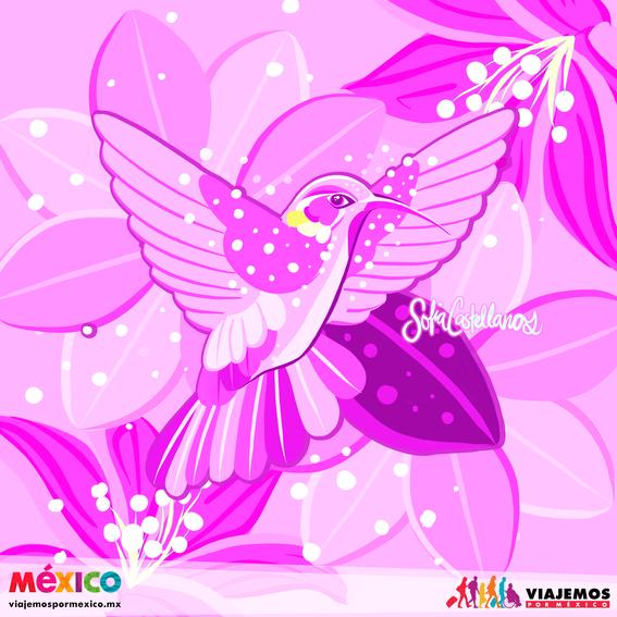artistas mexicanas 23