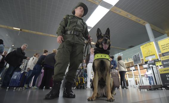 sombra perra policia amenazada por narcos en colombia 2