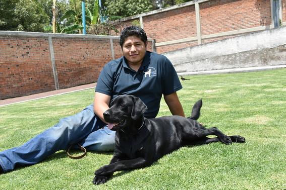 escuela para entrenar perros guia para ciegos cdmx 2