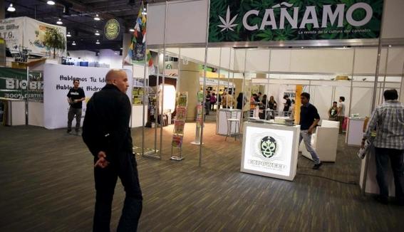 expoweed y las maneras de integrar marihuana a la sociedad 1