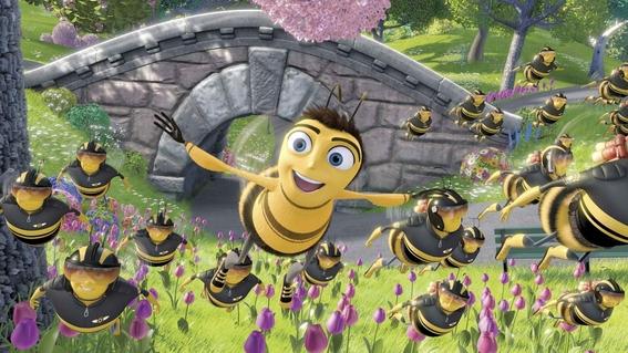 rescatar abejas especie en peligro de extincion 10