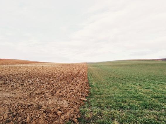 tierra en riesgo de caer en un estado invernadero irreversible 4