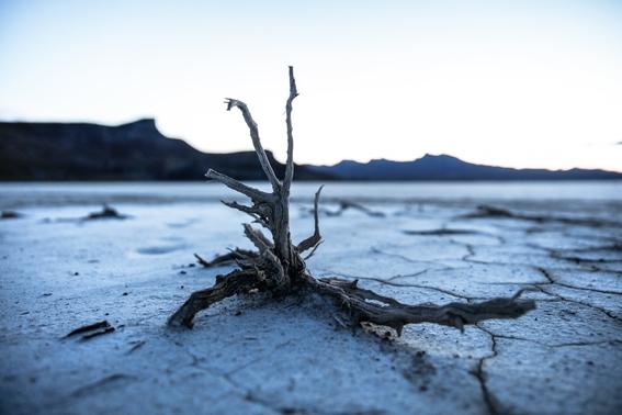 tierra en riesgo de caer en un estado invernadero irreversible 2