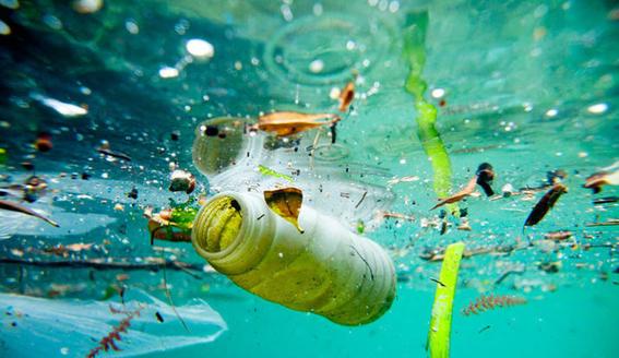 cuidar el medio ambiente 4