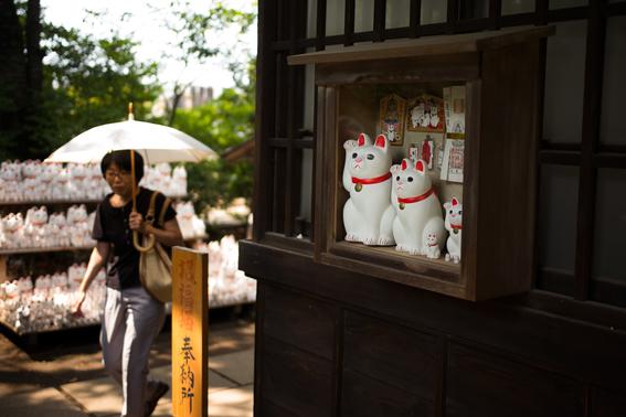 templo de los gatos de la suerte en japon 1