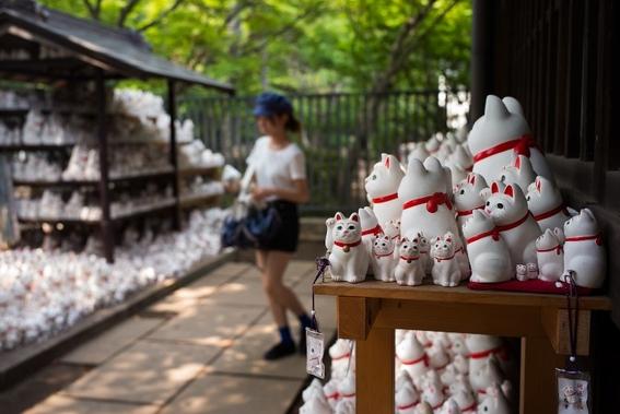 templo de los gatos de la suerte en japon 2