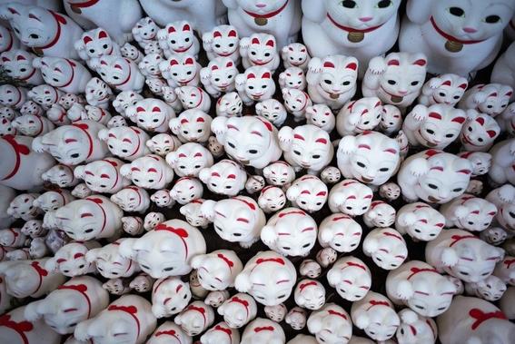 templo de los gatos de la suerte en japon 3