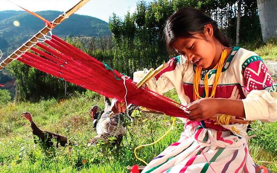 feria de las lenguas indigenas nacionales en la cdmx 1