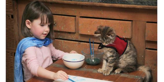 beneficios de tener gatos segun la ciencia 4