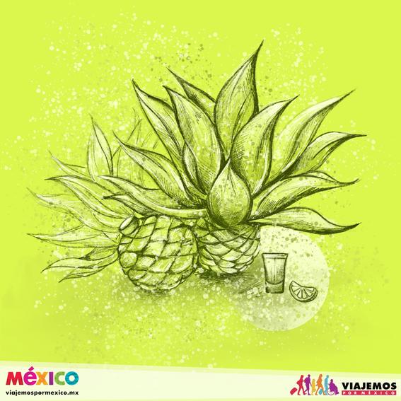 artistas mexicanas 24