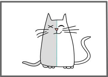 los gatos mas famosos en la ciencia 5