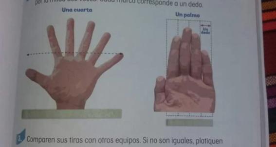 para la sep la mano tiene seis dedos 3