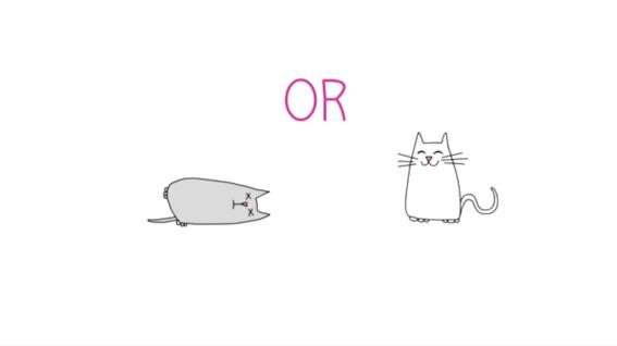 paradoja del gato de schrodinger explicacion 3