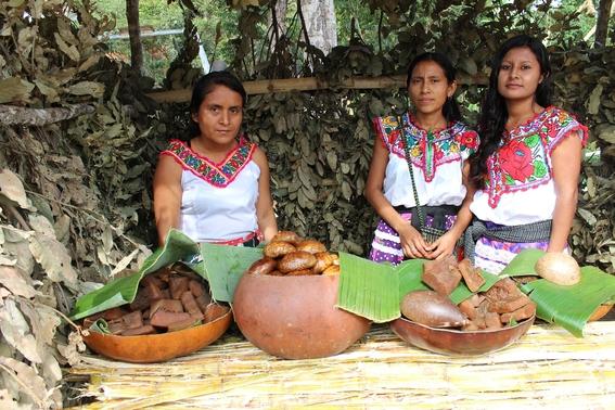 porque conmemoramos el dia internacional de los pueblos indigenas 3