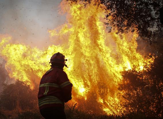 relacion entre calentamiento global e incendios forestales 1