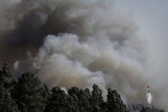 relacion entre calentamiento global e incendios forestales 3