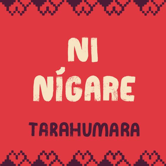 como se dice te amo en lenguas indigenas 2