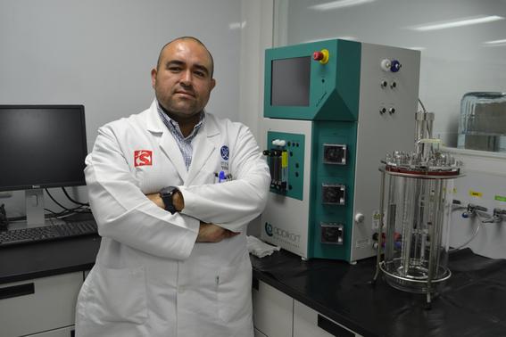 combatir la obesidad con bacterias en intestino 1