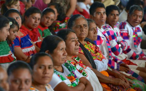 morena propone traducir leyes a lenguas indigenas 1