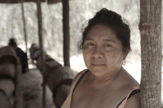 mujeres indigenas yucatecas productoras de miel 3