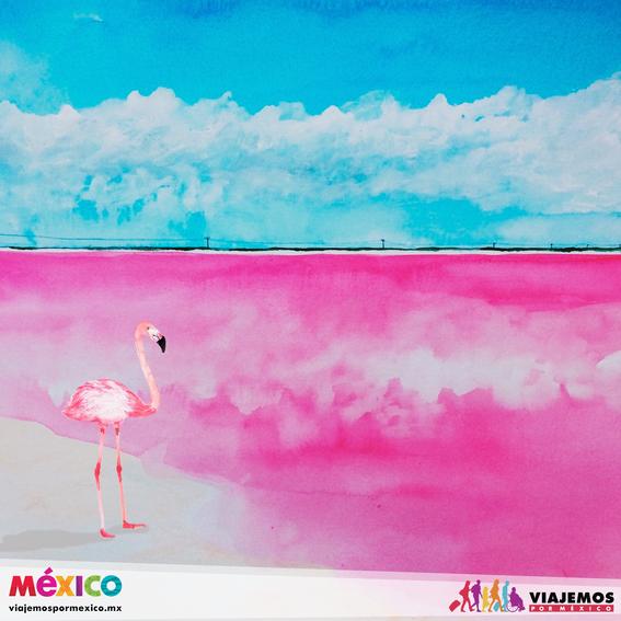 artistas mexicanas 12