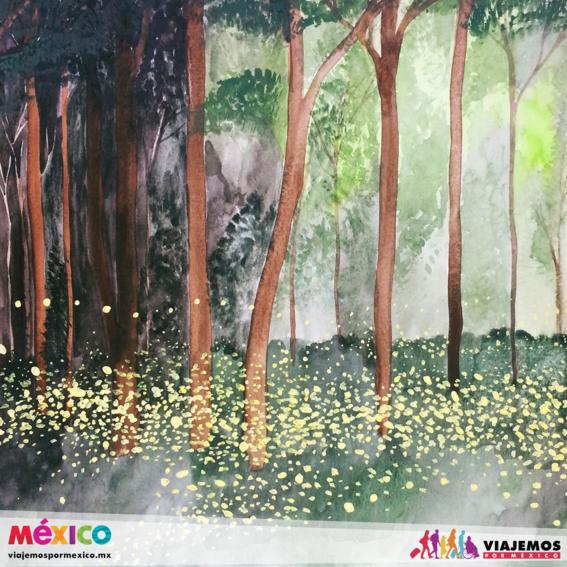 artistas mexicanas 14