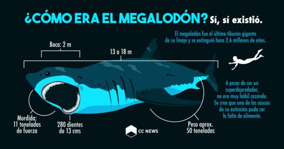 como era el megalodon 1