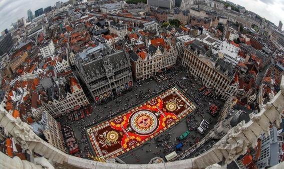 belgica decora su plaza con alfombra floral mexicana 2