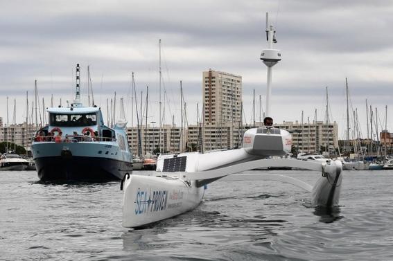 dron identifica y protege a los cetaceos 1