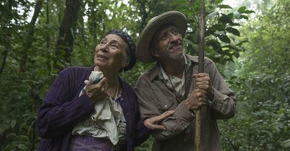 fiesta del cine mexicano 3