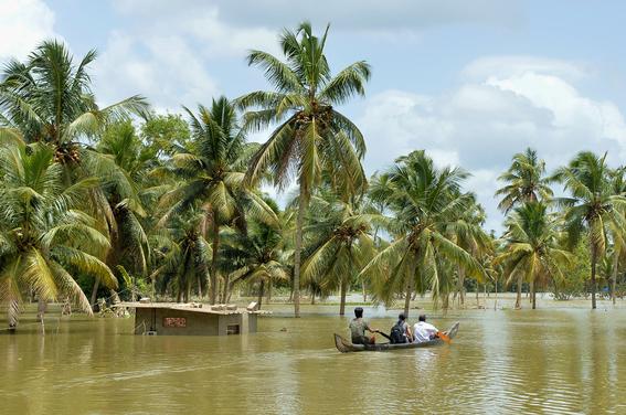 un millon de desplazados por inundaciones en india 4