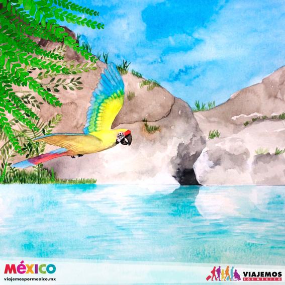 artistas mexicanas 16