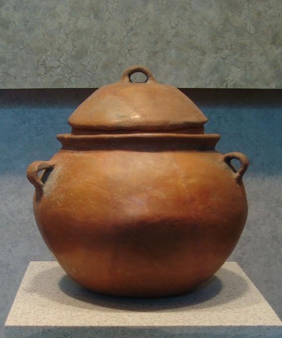 caracteristicas de la cultura mixteca 5