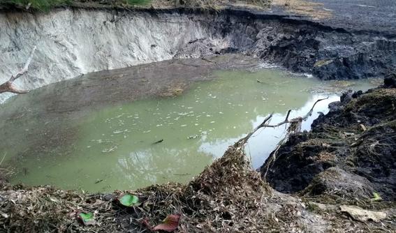 desaparece laguna de chakanbakan en quintana roo 1