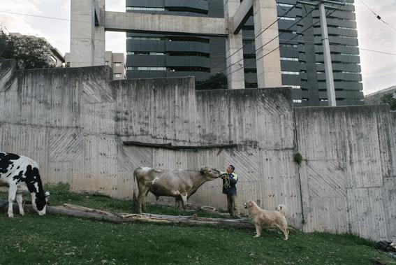 fotos de los campesinos de santa fe el basurero exclusivo 18