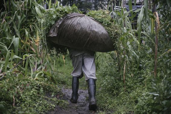 fotos de los campesinos de santa fe el basurero exclusivo 12
