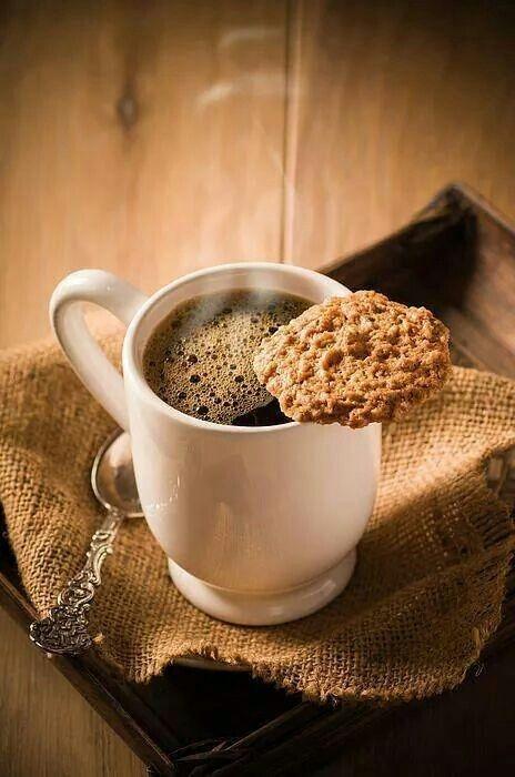 cafe hecho de excremento 2