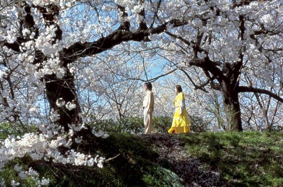 yohji yamamoto cine de culto japones 3