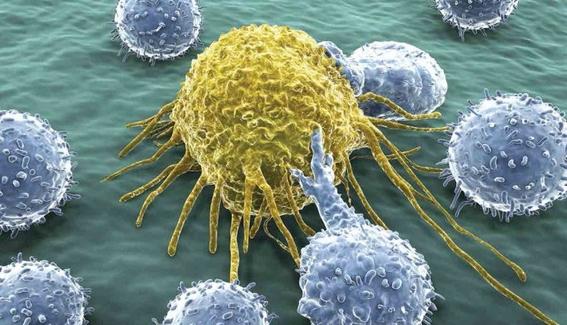 encuentran microorgano en cuerpo humano 2