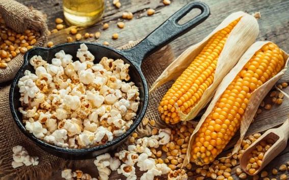 palomitas de maiz en peligro de extincion 2